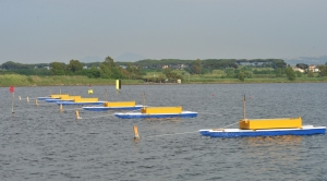 I barchini a Lago Patria